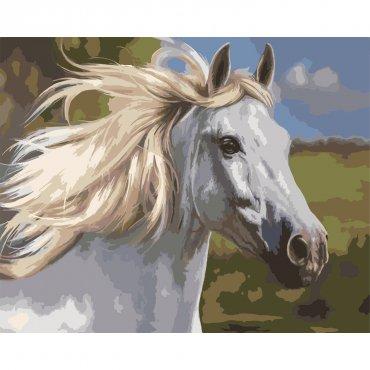 """Картина за рисуване по номера """" Бял Кон"""""""